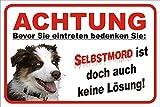 AdriLeo Schild Vorsicht Australian Shepherd Selbstmord 15x20 oder 20x30 (20x30cm)