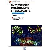 Enzymologie moléculaire et cellulaire : Tome 2