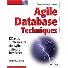 Agile Database Techniques: Effective Strategies for the Agile Software Developer by Scott Ambler (2003-10-17)