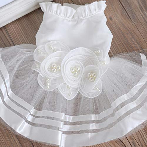 LmqhGzuqume Klassische Hundehochzeits-Kleid-Kostüm Haustier-Welpen-Katze kleidet Prinzessin LaceXL (weiß) - Kostüm Für Ihr Haustier Katze