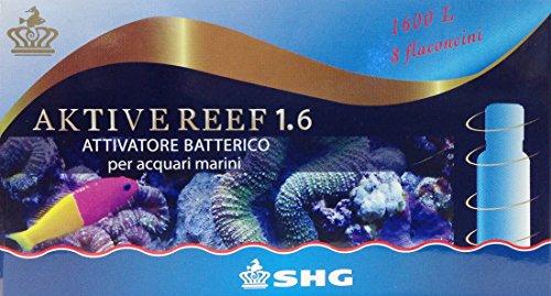 aktive-reef-16-attivatore-batterico-shg