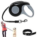 Einziehbare Hundeleine mit Hundehalsband - Verstellbar 16.4 ft Retractable Pet Hundeleine Leine für Hunde zu Training, Wandern, Joggen