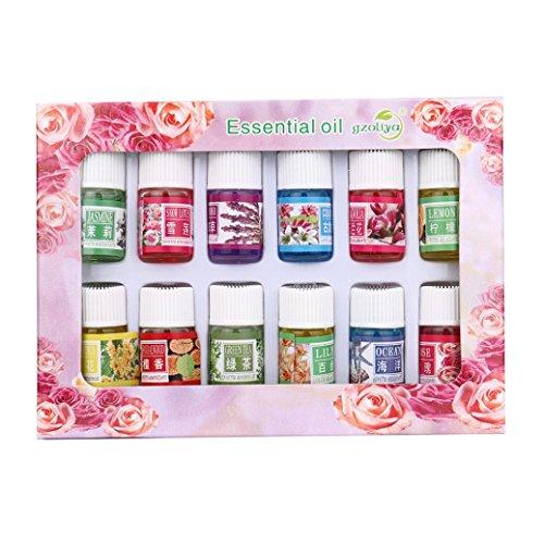 Longra 3ML/boîte Huiles Essentielles Aromathérapie Huile essentielle Soin de la peau Beauté de massage de bain (Orange, Lavande, Arbre à Thé, Citronnelle, Eucalyptus et Menthe Poivrée) (Multicolore)
