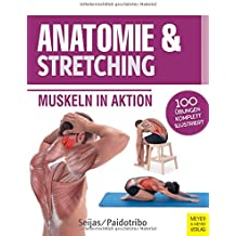 Anatomie & Stretching: Muskeln in Aktion