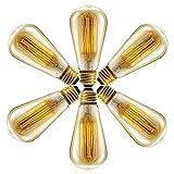 Vintage bombilla 60W–Filamento de Jaula de ardilla (anticuada Edison) E27Screw Int Pack de...