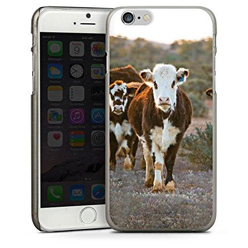 Apple iPhone 5 Housse étui coque protection Vache Vaches Veau CasDur anthracite clair