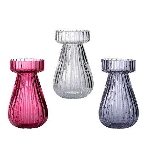 Conjunto de 3 florero de cristal del florero de cristal del jacinto de