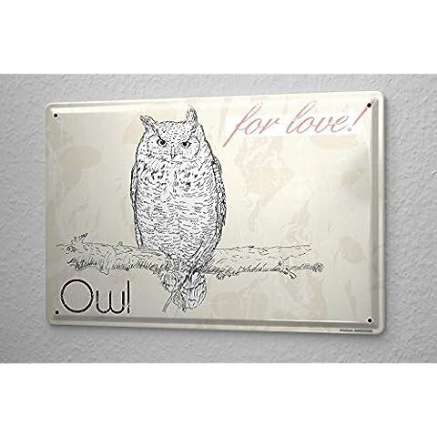 Cartello Targa in Metallo Specie Di Uccelli Amore gufo