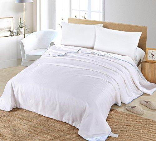 Silk Camel Silk Tröster mit 100% natürlichen langen Strand Mulberry Seide für alle Jahreszeiten, Seide, Summer Season (Filling Silk: twin 340g, queen 430g, king 510g), King Size - 102 in X 90 in