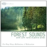 #8: Forest Sounds: with Soft Rains & Gentle Winds (Nature Sounds, Deep Sleep Music, Meditation, Relaxation Sounds of Nature)
