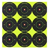 Birchwood Casey Shoot-n-c Pack 2 Inch Round Targets - Best Reviews Guide