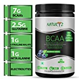 Bcaa Powders Review and Comparison