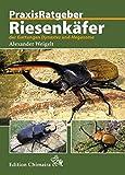 Riesenkäfer der Gattungen Dynastes und Megasoma (Praxis Ratgeber)
