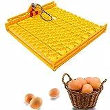 KING DO WAY Incubateur Automatique Couveuse 154 oeufs De Caille DIY Éclosion Poussin Poule Canard Élevage Volailles Egg Incubator Turner Tray Jaune 42cmX41.3cmX4.3cm