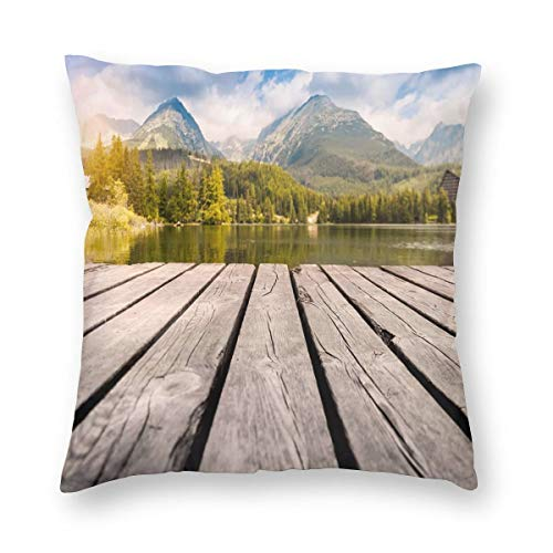 Square Pillow.Background Mountains Mountain,Hypoallergenicity Square Form Polyester,Standard/Multi-Size. (Hot Box Für Bed Bugs)