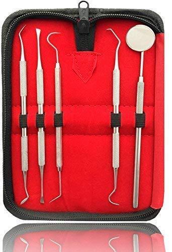 Dental Care Kit (5er Dental Zahnpflege Set | Professionelle Zahnreinigung Zahnsteinentferner | Zahnsonde Mundspiegel Scaler | Aus Edelstahl)