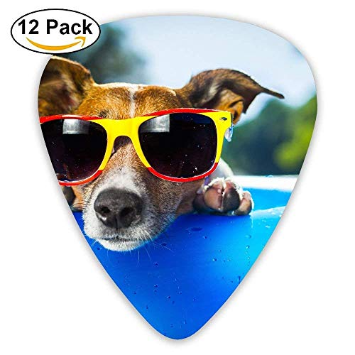 Dog Puppy Duck Glasses Drops Summer Funny Beach Blue Guitar Pick 12pack (Duck Art Glass)