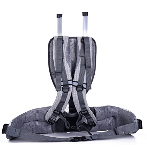 Outdoor-Klettern Reitpacktasche Tasche Tasche mit großer Kapazität wasserdichte Wanderrucksack 80L Rot