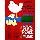 Wee Blue Coo Festival Concert Woodstock Ny Peace Dove Love
