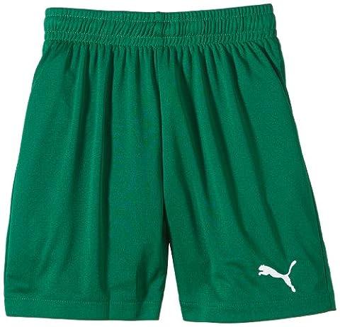 Puma Jungen Fußballshorts Velize, power Green, 128, 701895 52