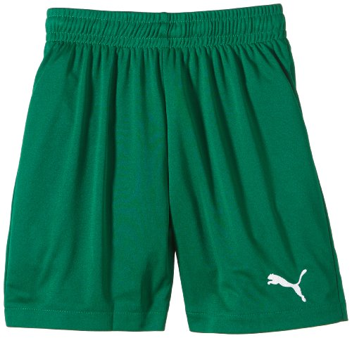 Puma Jungen Fußballshorts Velize, power Green,  140, 701895 52 (Power-mikrofaser-shorts)