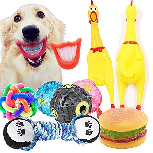 WANGHHH Animali Domestici e Articoli per Animali Domestici 6 Set di Cani e Gatti Forniture per Animali Palla Gonfiabile Che urla Pollo Che perde Palle di Cibo