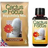 Cactus Focus trasplantar Mix 2L de bolsa y cactus 300ml Feed