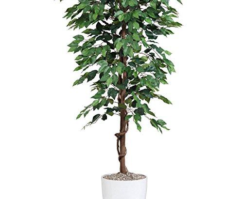 Kunstbaum 200cm Ficus Benjamini grün mit 2064 Blätter aus Textilfaser Material - 4