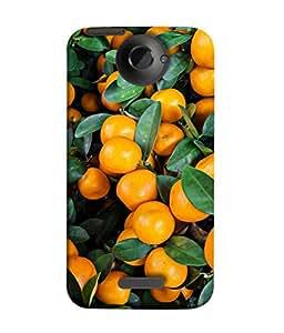 PrintVisa Designer Back Case Cover for HTC One X :: HTC One X+ :: HTC One X Plus :: HTC One XT (Fruits Lemon Vinegar Salad Leaves )