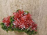 #7: Samriddhi Artificial Hanging Lucrative Lovely Long Hanging Orchid Colour - Red