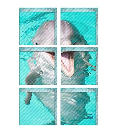 Jiaa 3D Delphin PVC Badewanne Aufkleber Rutschfeste Bad Abziehbilder,15cm×15cm,6 Stück (Badewanne Abziehbilder)