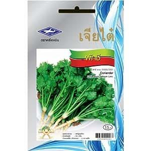 Koriander Seeds - 1 Paket Ab Chai Tai, Thailand