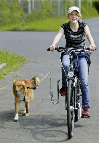 Karlie Flamingo 08389 - Doggy Guide Fahrrad - Führhalter für Hunde