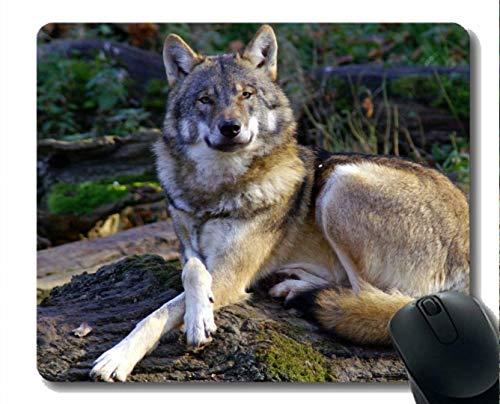 Mauspad Rutschfeste Naturkautschuk-Rechteck-Mauspads, Tierwolffrauen Mousepad Rutschfeste Gummiauflage