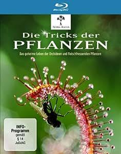 Die Tricks der Pflanzen [Blu-ray]