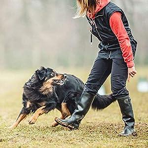Sifflet pour Dressage De Chien Professionnel Ultrasons Outil de Formation Durable Sifflet de Chien pour Bouledogue Labrador Schnauzers Papillon Caniche