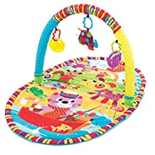 Playgro Play in the Park Activity Gym for Infant Toddler Children - Multi Color, PG0184213