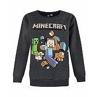 Minecraft - Sudadera oficial de Minecraft modelo Run Away para niños (Años (5/6)/Gris oscuro)
