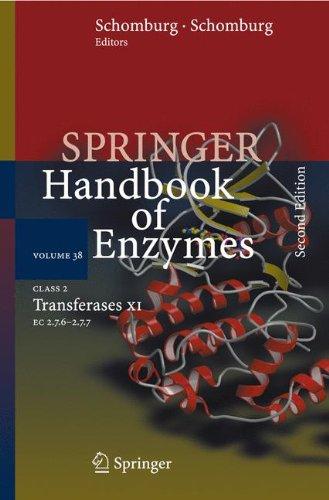 Class 2 Transferases XI: EC 2.7.6 - 2.7.7: 38 (Springer Handbook of Enzymes)