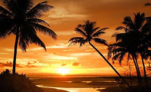 fotomurale-foto-wallpaper-carta-da-parati-foto-palme-tramonto-888-sfondo-blu-carta-254-cm-largo-x-18