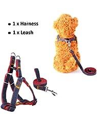 CUGLB arnés con correa ajustable de vaquero para mascotas perro,gato,cinturón de pecho y espalda,hombro para llevar perros con seguridad para perro pequeño,mediano,grande (Rojo, XS)