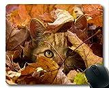 Mauspad, Mauspad für Tiere, Mauspad für Computer cat244