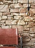 NEWROOM Steintapete Tapete Beige Mauer Stein Rustikal Vliestapete Beige Vlies moderne Design 3D Optik Steintapete Ziegelstein Backstein Mauerwerk Klinker Loft inkl. Tapezier Ratgeber