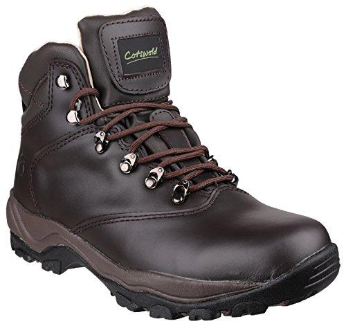 Cotswold Damen Leder Winstone Leder Wanderstiefel Wanderschuhe Stiefel Boots Braun 39 - Cotswold Leder