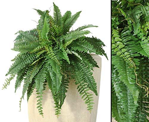 Königsfarn, Riesenversion mit 48 Blätter, Durch. 85cm - Kunstpflanze künstliche Blumen Kunstblumen Blumensträuße künstlich, Seidenblumen oder Blumen aus Plastik Kunststoff
