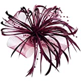 Burgundy Net Bow and Feathers Hair Beak Clip Brooch Corsage FascinatorBridal