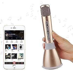 microphones sans fil karaok febite handheld haut parleur. Black Bedroom Furniture Sets. Home Design Ideas