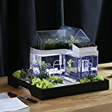 Acryl Mini Micro Landschaft Aquarium Büro Schreibtisch Kleine Persönliche Ökologie Multifunktionale Wohnzimmer Kreative Aquarium USB Powered LED Fisch Tank Lichter