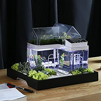 Acrylic Mini Micro Landscape Aquarium Office Desk Small Personal Ecology Multifunctional Living Room Creative Aquarium USB Powered LED fish tank lights 51YN83Z567L