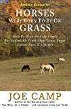 Image de HORSES WERE BORN TO BE ON GRASS - How We Discovered the Simple But Undeniable Truth About